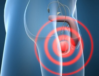 testicular-pain